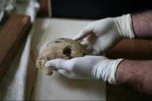Hitler skull